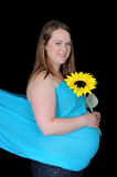 Radiant pregnant woman holding sunflower. isolated Royalty Free Stock Photo