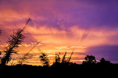 Radiant Sunset Stock Photography