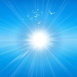 Radiant sunshine Royalty Free Stock Photo