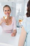 Radiant women having glass of wine Royalty Free Stock Image