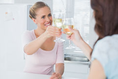 Radiant women having a toast Stock Image