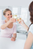 Radiant women having a toast with white wine Stock Images