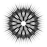 Radiating / radial abstract circular geometric element. Abstract. Black and white shape - Royalty free vector illustration royalty free illustration