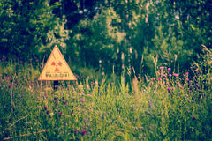 Radiation, grass, summer Royalty Free Stock Photography