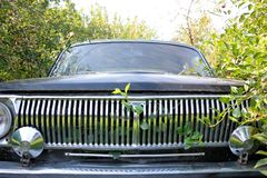Radiator of the automobile with green foliage Royalty Free Stock Photo