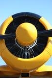 Radiatore anteriore dell'aeroplano Fotografia Stock