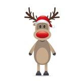 Radiatore anteriore di colore rosso della renna di Rudolph Fotografia Stock
