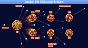 Radiazione dei prodotti di fenditura U-235 Immagini Stock