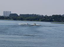 Radical wakeboard on the lake in sunny day Royalty Free Stock Photo