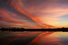 Radical Zebra Cloud Reflection Stock Images