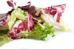 Radicchio σαλάτας και πράσινο μαρούλι στο άσπρο υπόβαθρο, την εκλεκτική εστίαση και και την ελεγχόμενη θαμπάδα Στοκ Εικόνες