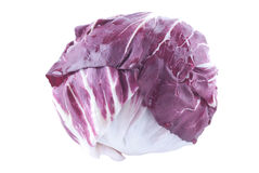 Radicchio. Fresh radicchio on white background Royalty Free Stock Photos
