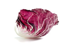 Radicchio Photographie stock
