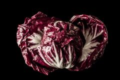 radicchio Stockfotos