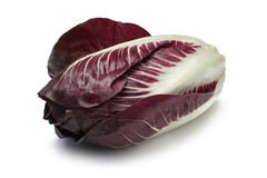 Radicchio. Isolated on white with clipping path Royalty Free Stock Photos