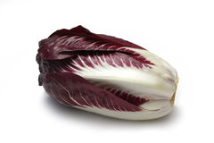 Radicchio. Isolated on white with clipping path Stock Photo