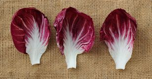 Radicchio. Is on bag background Stock Photos