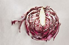Radicchio royalty free stock photo
