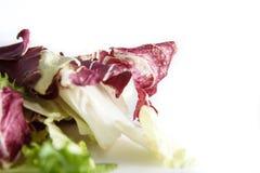 Radicchio da salada e alface verde isolados no fundo branco, no foco seletivo e e no borrão controlado Fotos de Stock