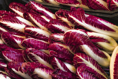 Radicchio on Display at an Italian Market Royalty Free Stock Photography