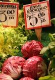 Radicchio frais Images stock