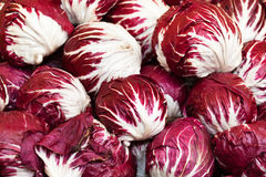 Radicchio heads. Lots of radicchio heads on the market (Cichorium intybus, Asteraceae Royalty Free Stock Photo