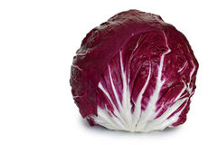 Radicchio. Isolated on white background Stock Photo