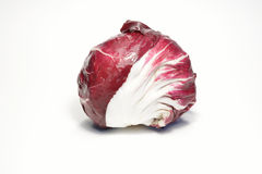 Radicchio. Italian red radicchio isolated on white background Stock Photos