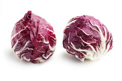 Radicchio. Pair of fresh radicchio isolated on white background Royalty Free Stock Image