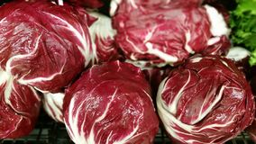 Radicchio. At a produce stand Stock Photos