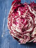 Radicchio red chicory closeup. On blue background Royalty Free Stock Photo