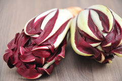 Radicchio. Red chicory (Radicchio), typical North Italy (Veneto region) vegetable Royalty Free Stock Image