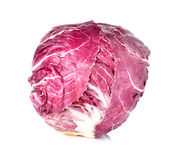 Radicchio, red salad Stock Image
