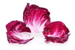 Radicchio, red salad. Isolated on white Stock Images