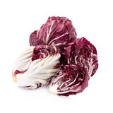 Radicchio, red salad isolated on white Royalty Free Stock Image
