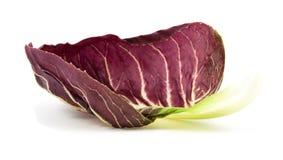 Radicchio red salad isolated Stock Photos