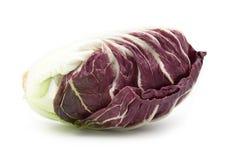 Radicchio red salad isolated. On white Royalty Free Stock Photo