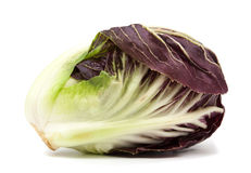 Radicchio red salad isolated Royalty Free Stock Images