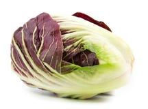 Radicchio red salad isolated. On white Royalty Free Stock Photos