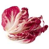 Radicchio, red salad isolated on white background.  Royalty Free Stock Photos