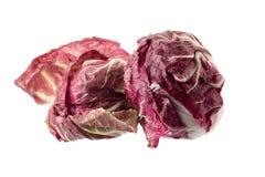 Radicchio, red salad isolated on white background.  Stock Images