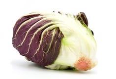 Radicchio red salad isolated on white. Background Royalty Free Stock Image
