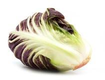 Radicchio red salad isolated on white. Background Stock Photos