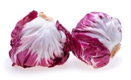 Radicchio, red salad Royalty Free Stock Images