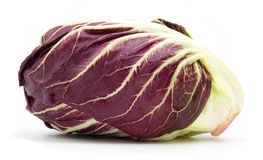 Radicchio red salad  Stock Images