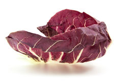 Radicchio red salad  Stock Image