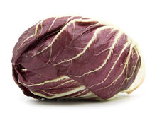 Radicchio red salad  Royalty Free Stock Images