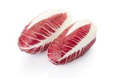 Radicchio, red salad Stock Image