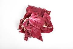 Radicchio, rode die salade op witte achtergrond wordt geïsoleerd royalty-vrije stock afbeeldingen