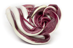 Radicchio Rosso di Treviso. On white background Royalty Free Stock Photography